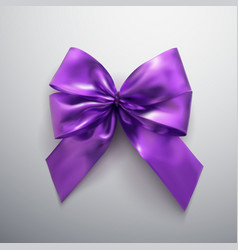 purple bow and ribbons vector image vector image
