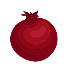 flat icon of red ripe pomegranate vector image