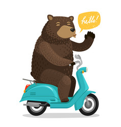 funny bear riding a scooter circus concept vector image