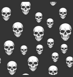 human skull seamless pattern sketch vector image