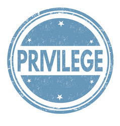 privilege sign or stamp vector image