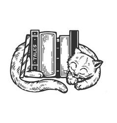 sleeping cat around books engraving vector image