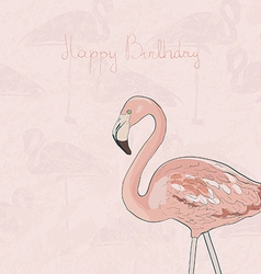 FlamingoAkva7 vector image