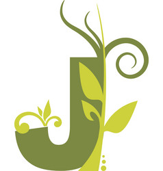 nature j vector image vector image