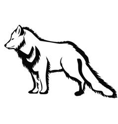 arctic fox vector image