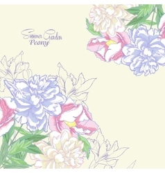 Background with color peonies and irises-05 vector image