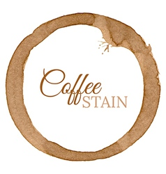 Coffee Cup Stain Background vector