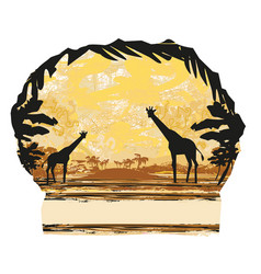 grunge background with giraffe silhouette on vector image