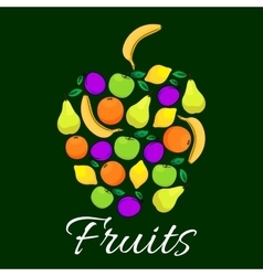 Fruits flat icons combined in shape of apple fruit vector image vector image