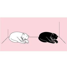 Sleeping cats vector image vector image