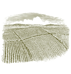 Woodcut Aerial of Field vector image vector image