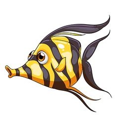 A stripe-colored fish vector