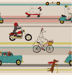 funny dogs driving vehicles seamless pattern vector image