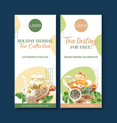 Herbal tea flyer design with parsley bay leaves vector