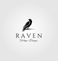 raven or crow bird logo design vector image