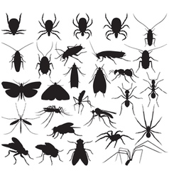 Silhouette household pests vector