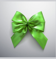 green bow and ribbons vector image