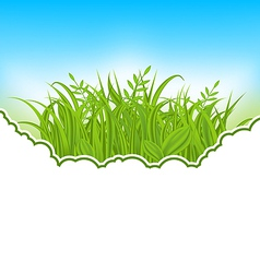 Nature card with green grass vector image vector image