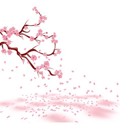 branches of a faded pink cherry sakura the vector image vector image