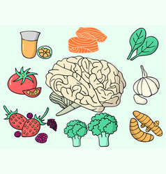 all brain food vector image