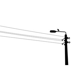 Crow on the street lamp vector