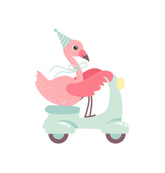 cute flamingo riding scooter wearing party hat vector image