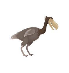 Dodo bird with small wings and large beak extinct vector