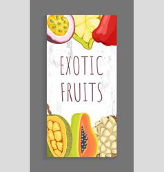 passion fruit cupuacu chompoo jackfruit papaya vector image