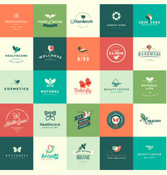 set flat design animals and nature icons vector image