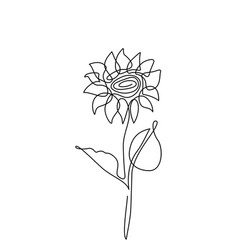 sunflower flower in simple vector image