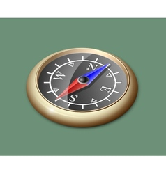Brass compass vector image vector image