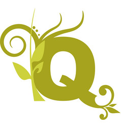 nature q vector image vector image