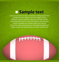 rugby ball on the field vector image vector image