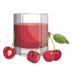 a glass fresh cherry juice vitamin refreshing vector image