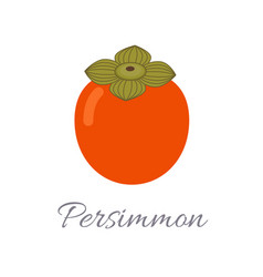 persimmon icon with title vector image