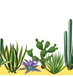 Seamless border with cactuses and succulents set vector