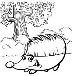 hedgehog cartoon for coloring book vector image vector image