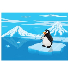 penguine on ice lce land vector image vector image