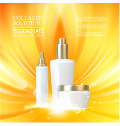 beauty skin care set vector image