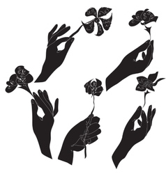 Hands with flowers set vector image