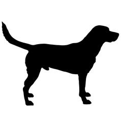 Labrador silhouette vector