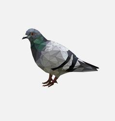 low poly pigeon bird on gray back groundanimal vector image