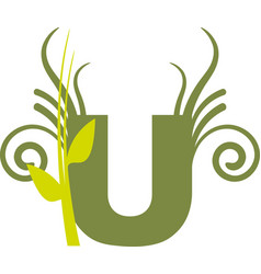 nature u vector image