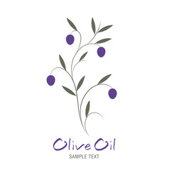 olive branch and text hand drawn isolated on vector image