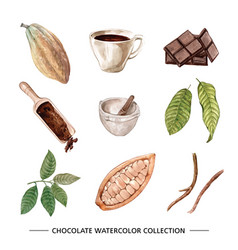 Set watercolor design chocolate on white vector