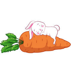 Sleeping rabbit vector