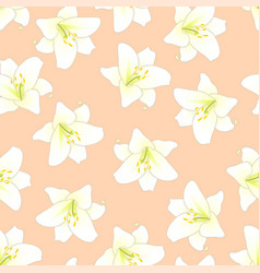 White lily on orange peach background vector