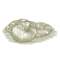 Woodcut croissant vector
