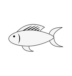 fish food isolated vector image vector image