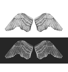 Wing Angel Hand Draw Sketch vector image